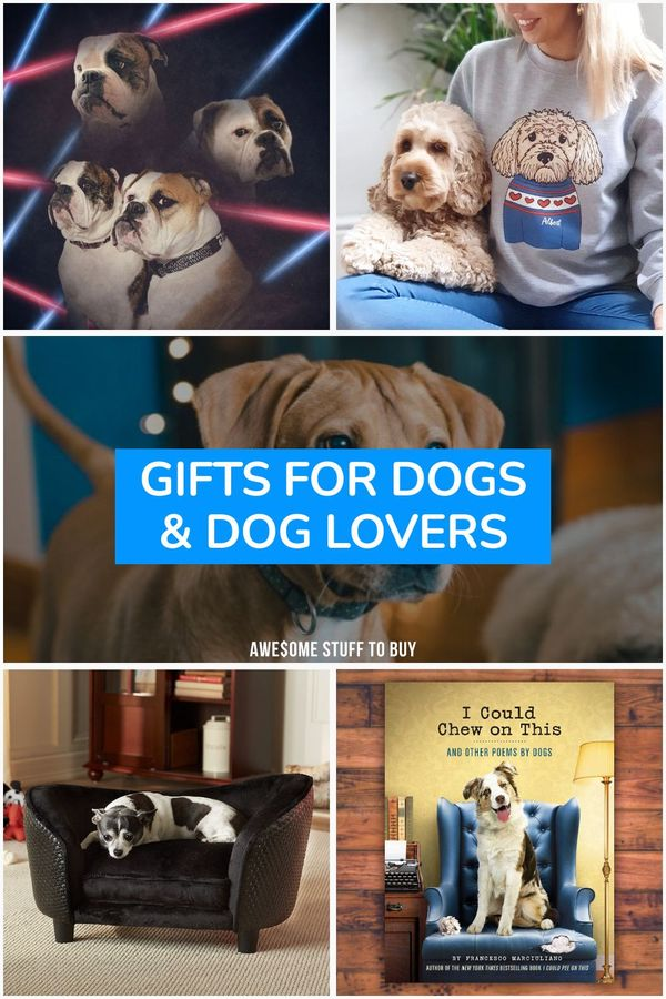 Gifts for Dogs // Awesome Stuff to Buy
